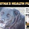Save Shayna