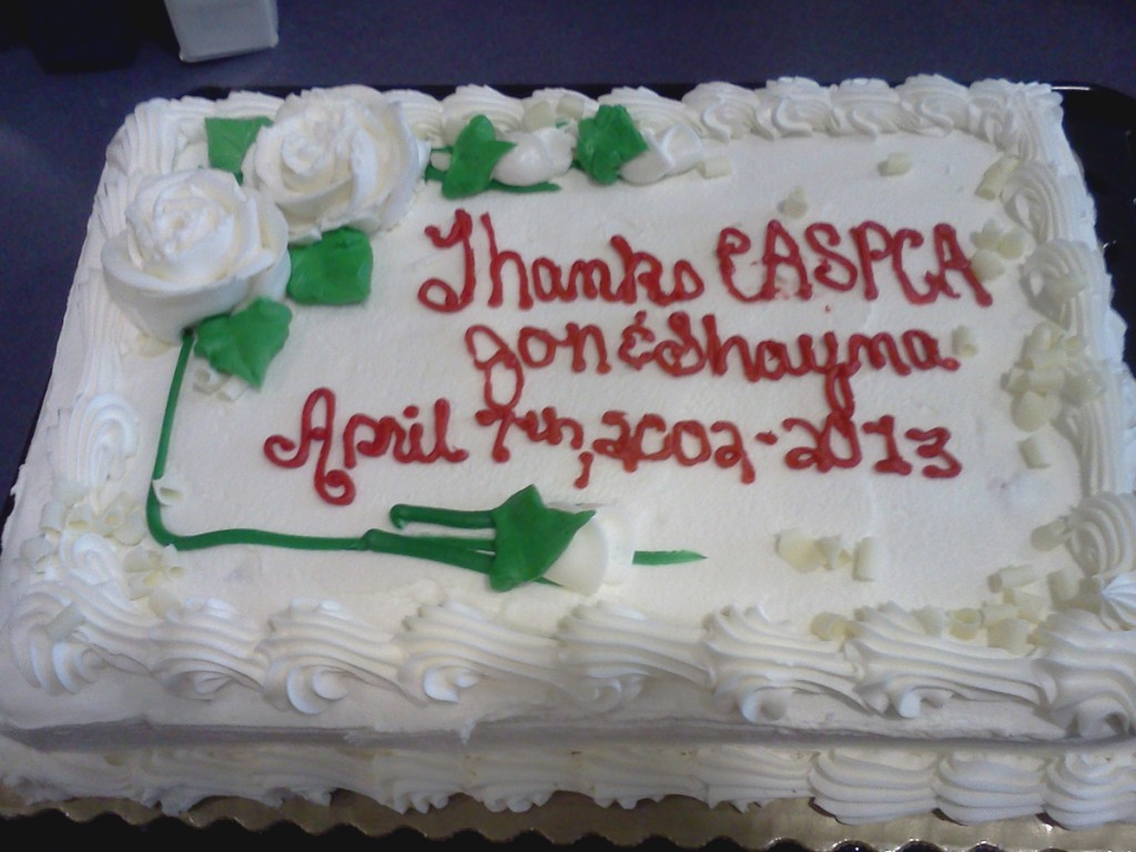 07Apr13-cake1