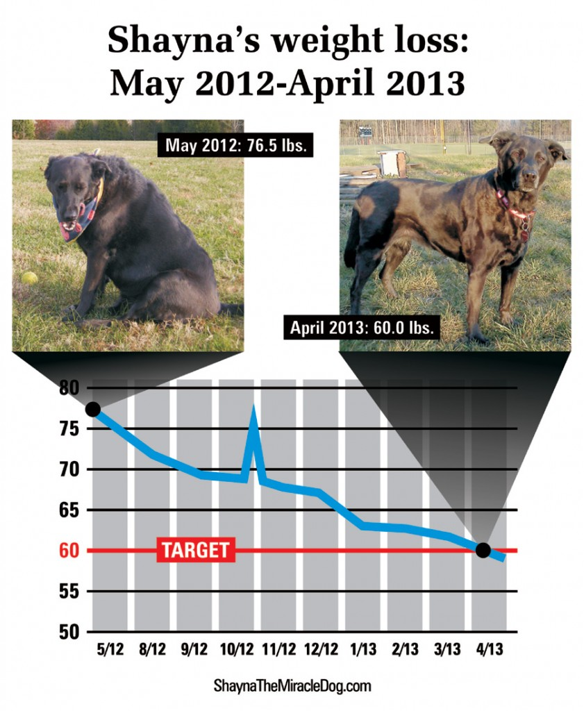 Shayna-weight-loss-chart