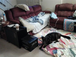 "August 20, 2013: Our ""bedroom"" in the living room.  This had been our setup since she got sick in October 2012."